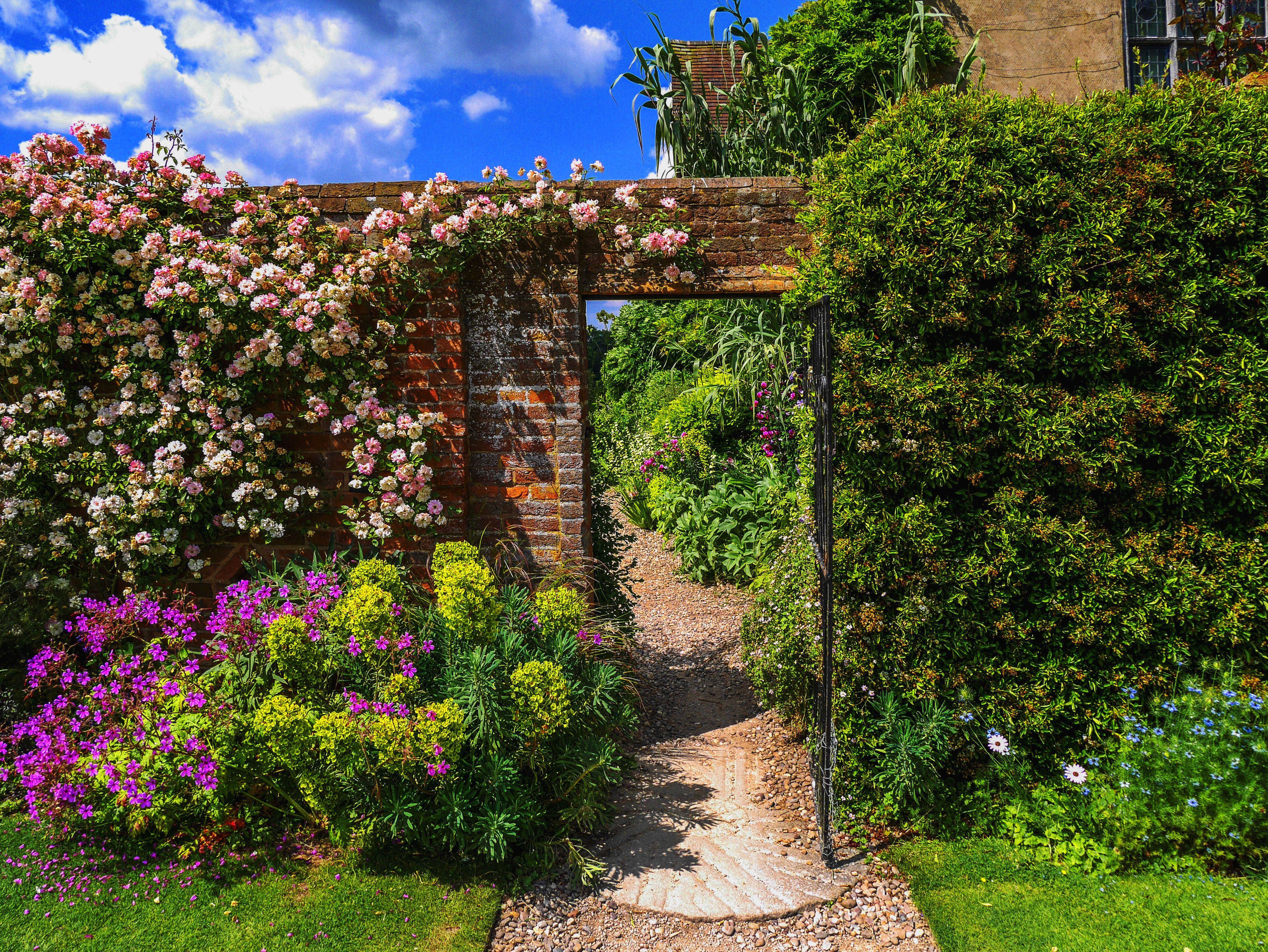 Is your garden the best in Britain?