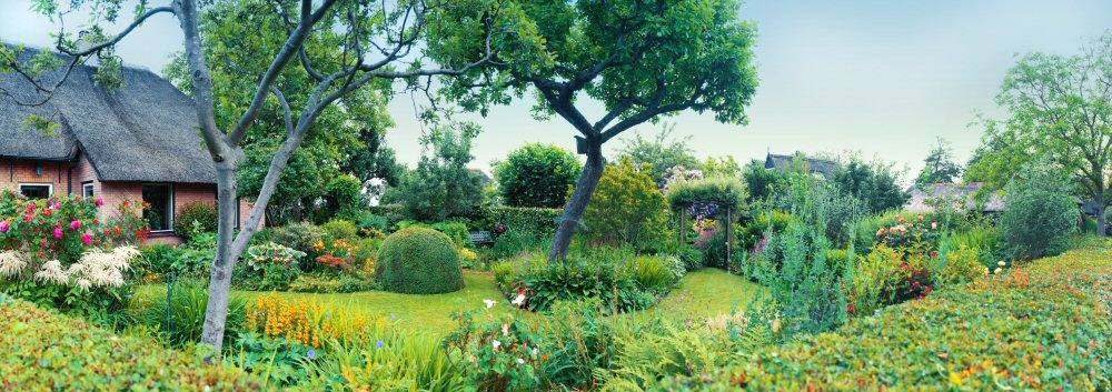 Pretty Garden with trees