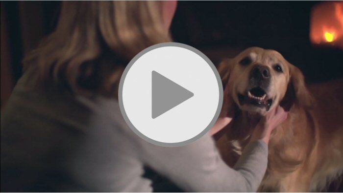 Lights, cameras, action: the new Fine & Country TV advert is here