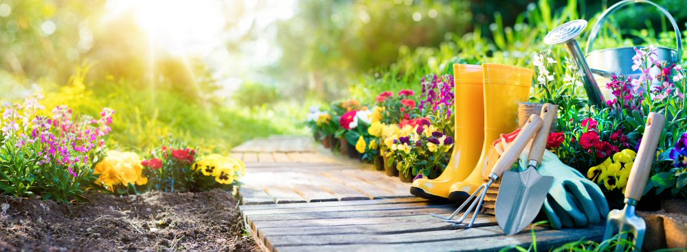 Top 10 ways to add value to your garden