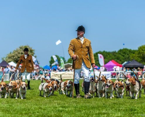 Bentons are appearing at the Rutland County Show 2017!