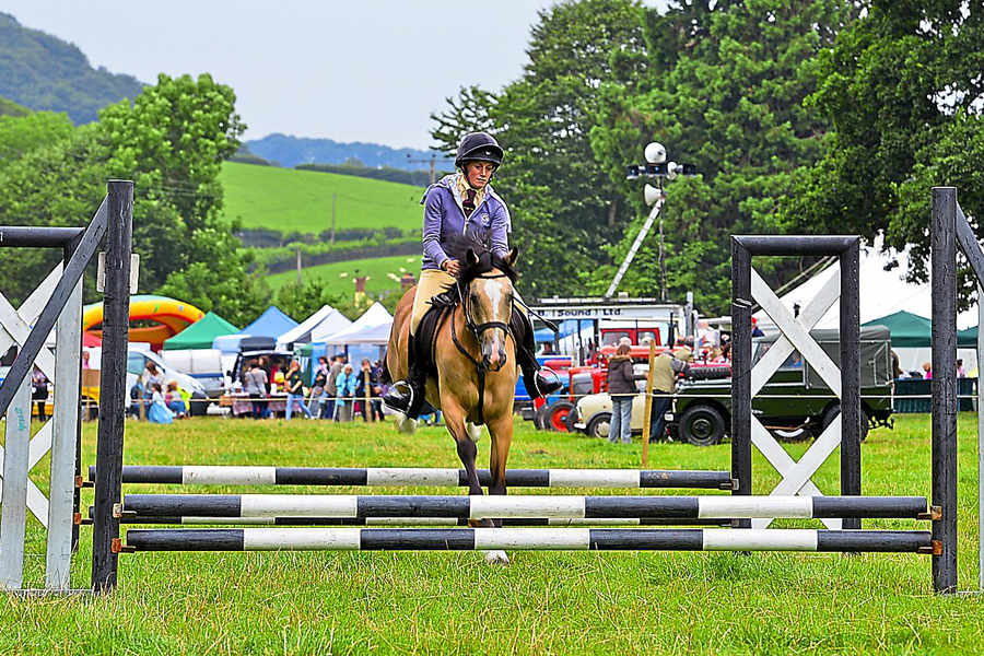 guilsfield_show