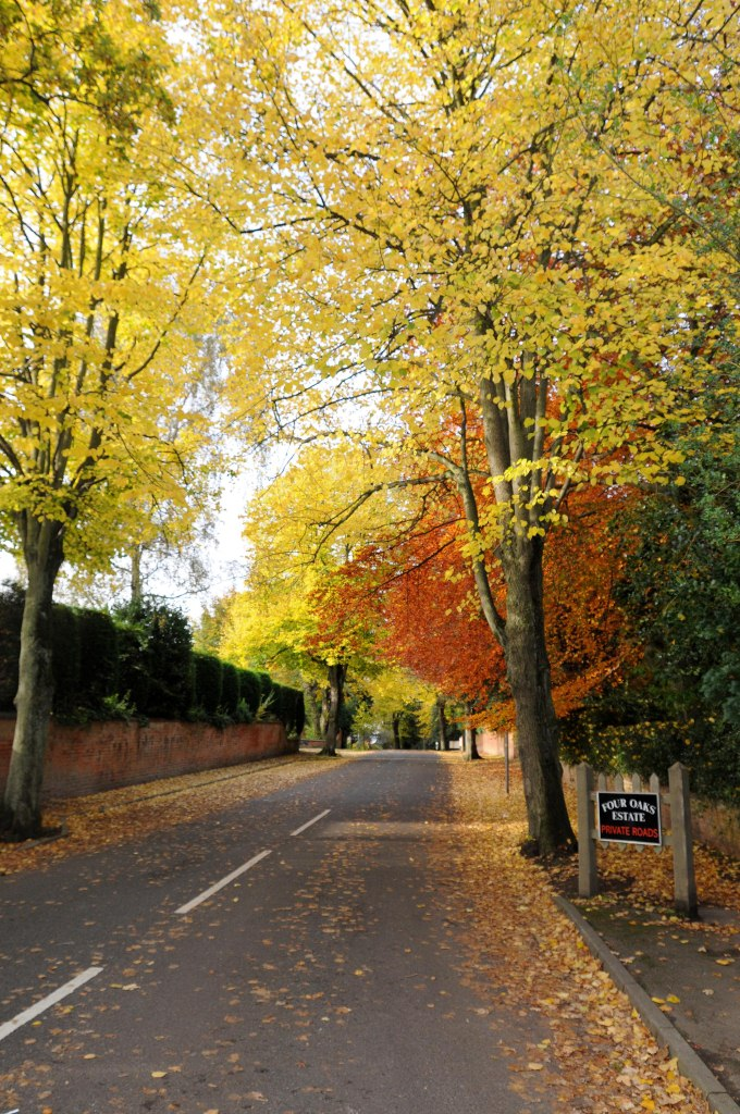 014_Wentworth_Road_resize