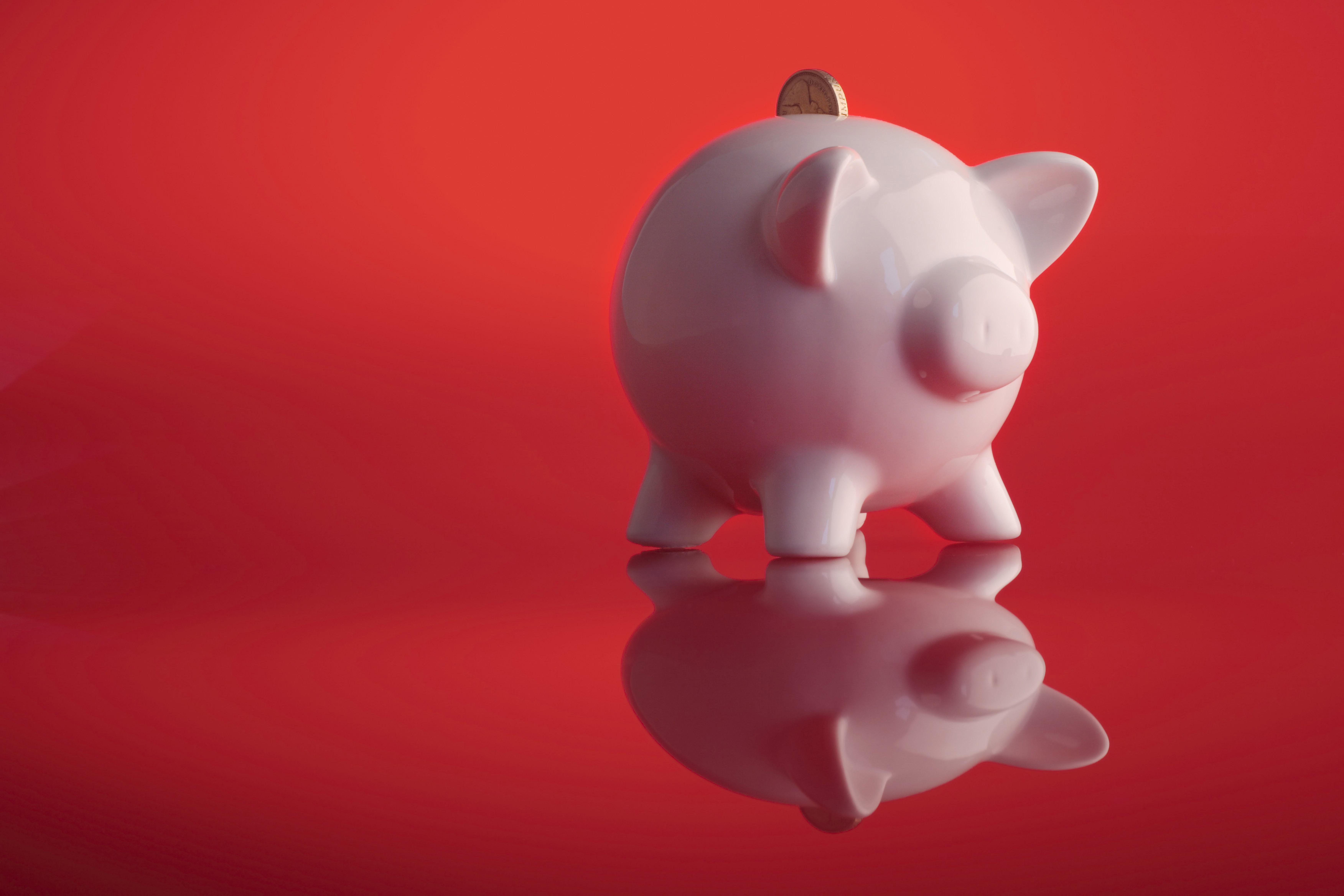 Need Financial Advice?