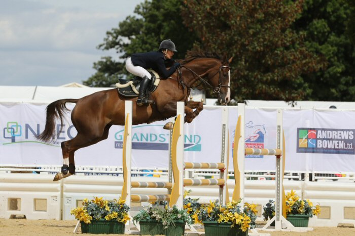 showjumping-competition