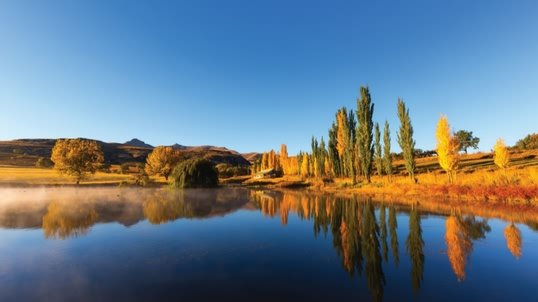 sa_tile_farms2