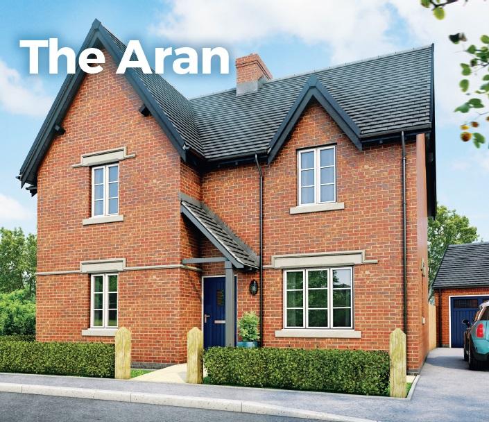 the_aran