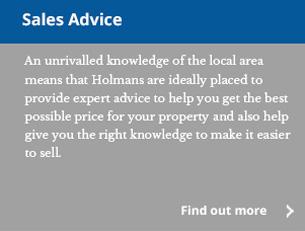 sales_advice