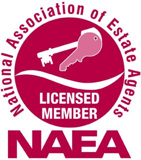 naea_logo_WEB