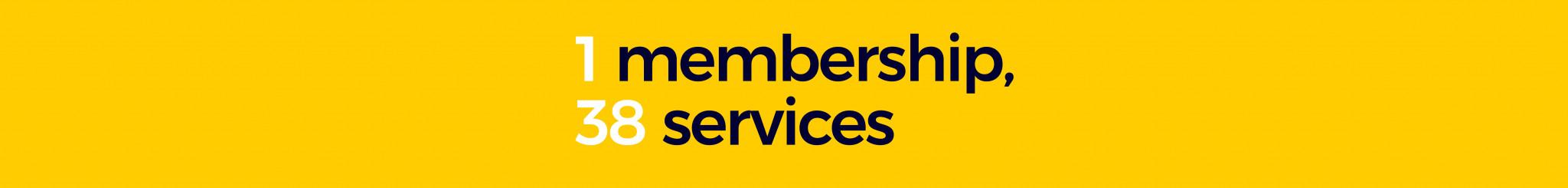 1_membership,_38_services